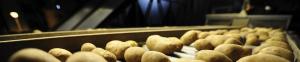 מכונות לאריזת מזון