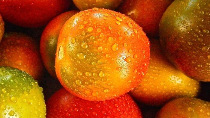 בית אריזה תפוזים